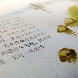 שיעורי סינית