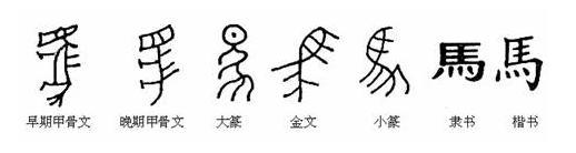 character_evolution