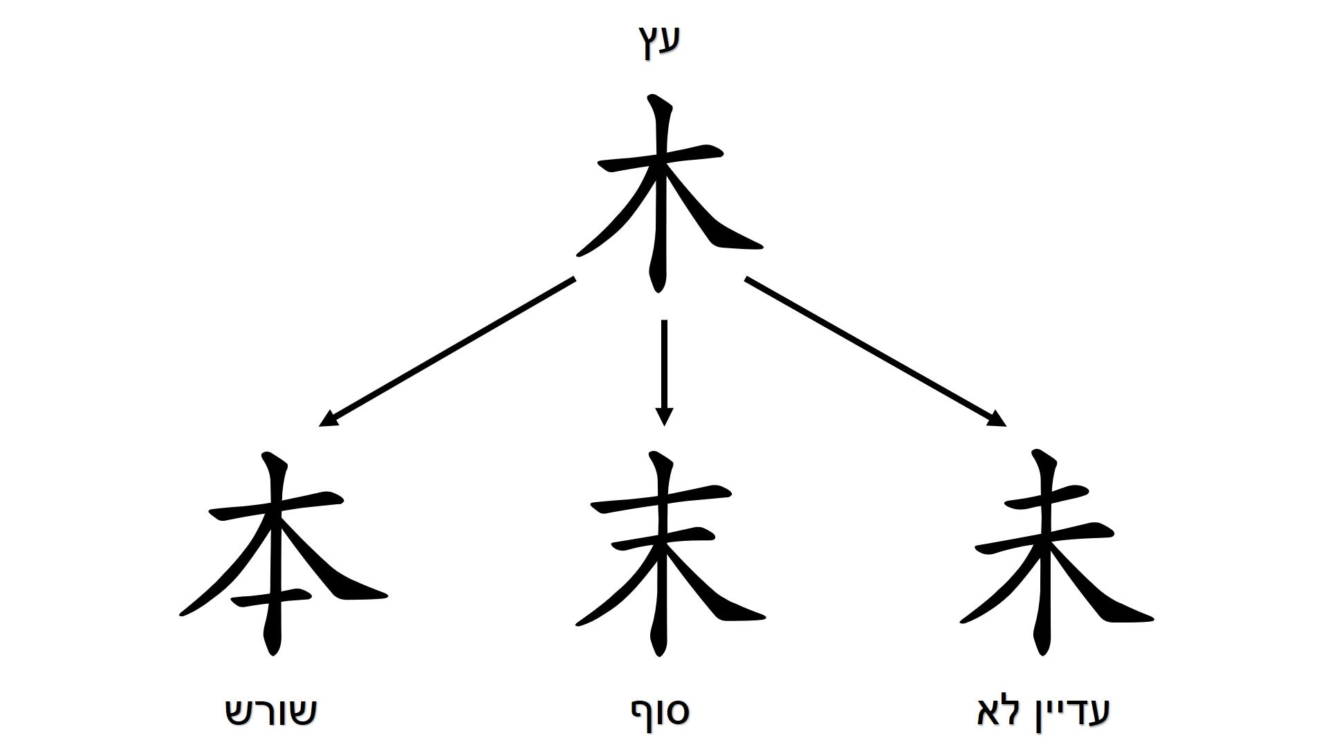 tree_derivatives