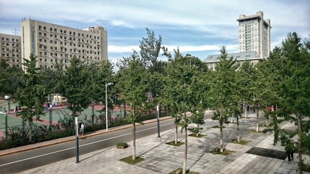 Beijing Normal University Campus