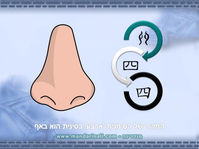 four_nose