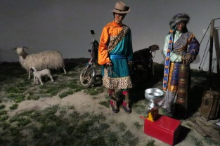 tibet_museum_visit27